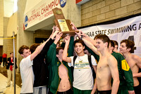 2016 Swimming & Diving State Meet