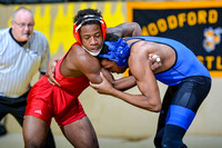 2015 Wrestling State Championships